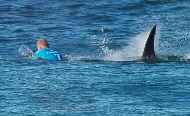 Foto 2 - Do surf:susfistas mais protegidos em JBay.png