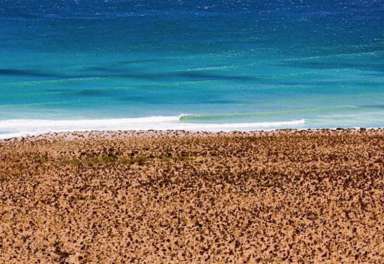 Lémen- Do Surf: 5 lugares que você nunca pensou em surfar.png