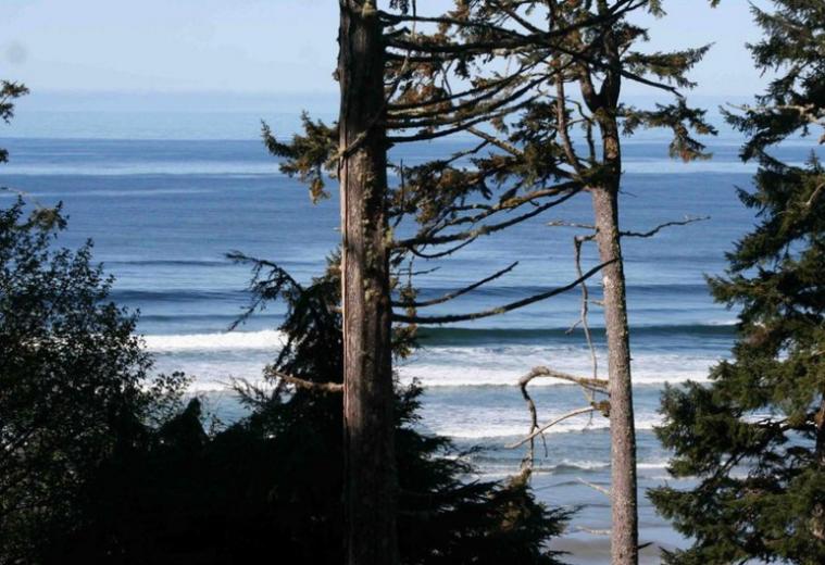 Vancouver - Do Surf: 5 lugares que você nunca pensou em surfar.png