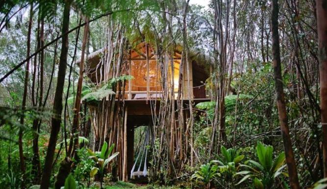 Foto 1- Dosurf:Os 10 melhores Airbnb`s para surfistas .png